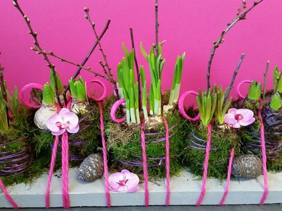 Pink spring - €23,00